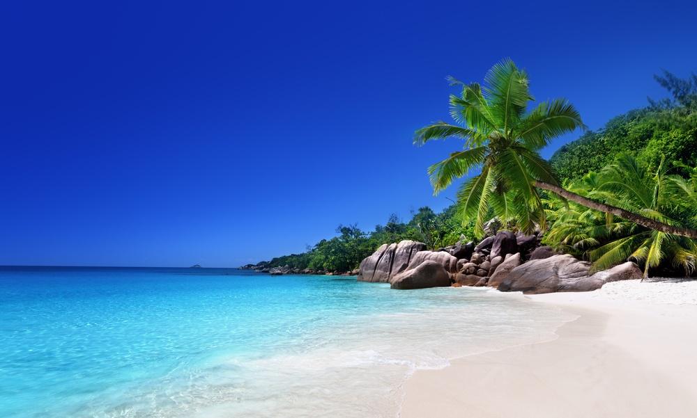 beach at Praslin island, Seychelles.jpeg